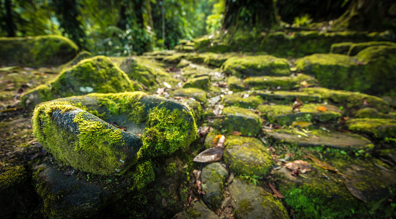 Mossy Ancient Carved Rocks