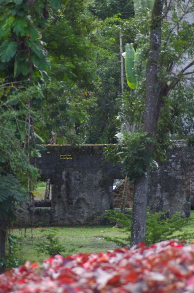 A view of the ruins over the garden.