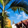 La Palma, Canary Islands<br /> Hacienda de Abajo<br /> Leica M Typ 240 + Tri Elmar MATE