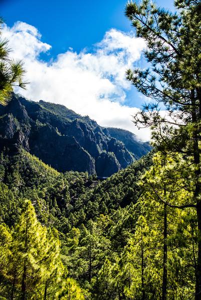 La Palma, Canary Islands<br /> Mirador de Cumbracita<br /> Looking towards La Caldera de Turbiente