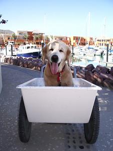 Screw Gary.  I got my own vessel now.  I am a Captain!