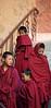 Thiksey Gompa<br /> Ladakh, India<br /> 2008