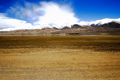 Taken at Latitude/Longitude:33.445202/78.785862. 15.48 km North-West Gandpa Gömpa Kashmir India  (Map link)