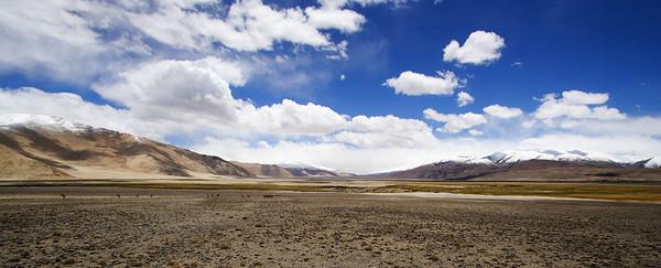 Taken at Latitude/Longitude:33.635630/78.656365. 3.94 km North-East Chushul Kashmir India  (Map link)