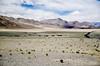 "Taken at Latitude/Longitude:32.901815/78.927515. 14.05 km North-West Hanle Kashmir India <a href=""http://www.geonames.org/maps/google_32.901815_78.927515.html""> (Map link)</a>"