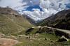 "Taken at Latitude/Longitude:32.392295/77.260922. 2.02 km South-East Khoksar Himachal Pradesh India <a href=""http://www.geonames.org/maps/google_32.392295_77.260922.html""> (Map link)</a>"