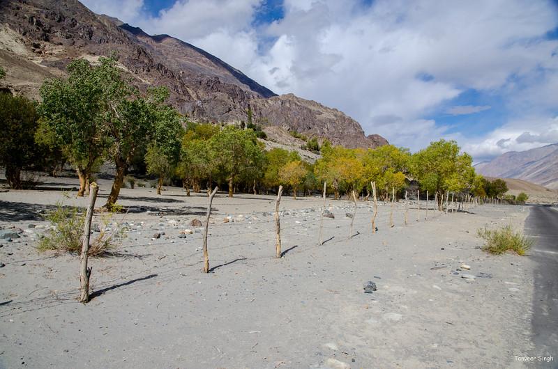 "Taken at Latitude/Longitude:34.375117/77.785445. 3.33 km South Rongdu Kashmir India <a href=""http://www.geonames.org/maps/google_34.375117_77.785445.html""> (Map link)</a>"