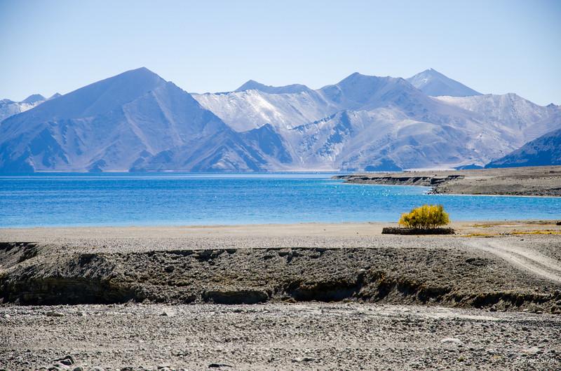 "Taken at Latitude/Longitude:33.772928/78.619542. 1.50 km South Kakstet Kashmir India <a href=""http://www.geonames.org/maps/google_33.772928_78.619542.html""> (Map link)</a>"