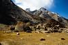 "Taken at Latitude/Longitude:34.049965/76.220160. 6.10 km East Gulmatngo Kashmir India <a href=""http://www.geonames.org/maps/google_34.049965_76.220160.html""> (Map link)</a>"