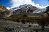 "Taken at Latitude/Longitude:34.093373/75.997598. 0.66 km North-East Parkaryan Kashmir India <a href=""http://www.geonames.org/maps/google_34.093373_75.997598.html""> (Map link)</a>"
