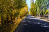 "Taken at Latitude/Longitude:34.437318/76.057027. 2.61 km North Kunore Kashmir India <a href=""http://www.geonames.org/maps/google_34.437318_76.057027.html""> (Map link)</a>"