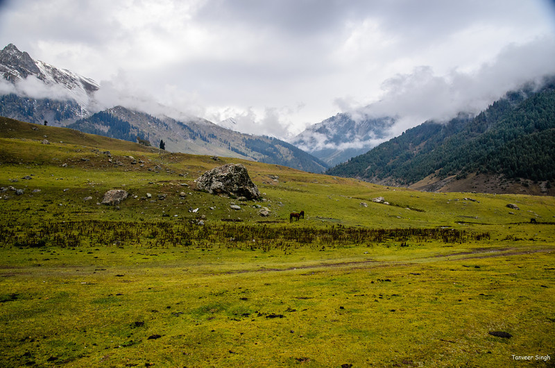 """Taken at Latitude/Longitude:34.301540/75.281445. 1.53 km West Sonmarg Kashmir India <a href=""""http://www.geonames.org/maps/google_34.301540_75.281445.html""""> (Map link)</a>"""