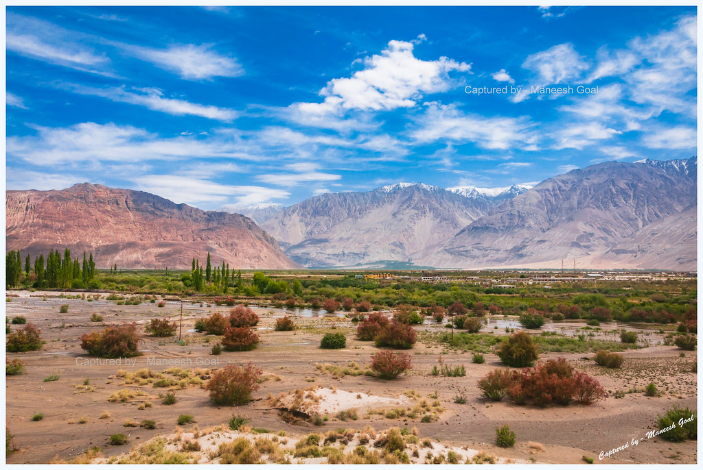Colours of Nubra Valley