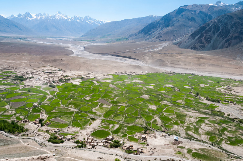 Snow melt irrigates the Zanskar Valley below Stongdey Gompa