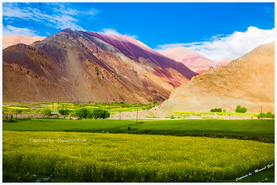 Colourful Mountains & Fields in Zanskar Valley