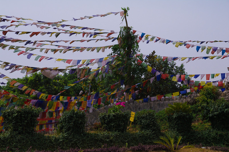 Ladakh2010-16