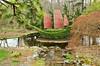 Asian junk topiary in Iris Garden.