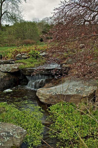 Small fall isolated in Iris Garden.