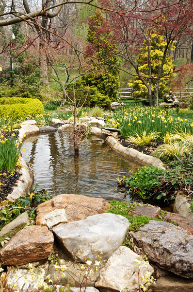 Yellow Garden brook.
