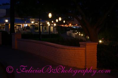 Night Lights 052207