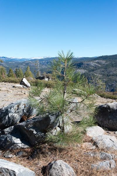 20171021-Lake Alpine-1715