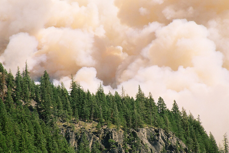 Flick Creek Fire, Stehekin