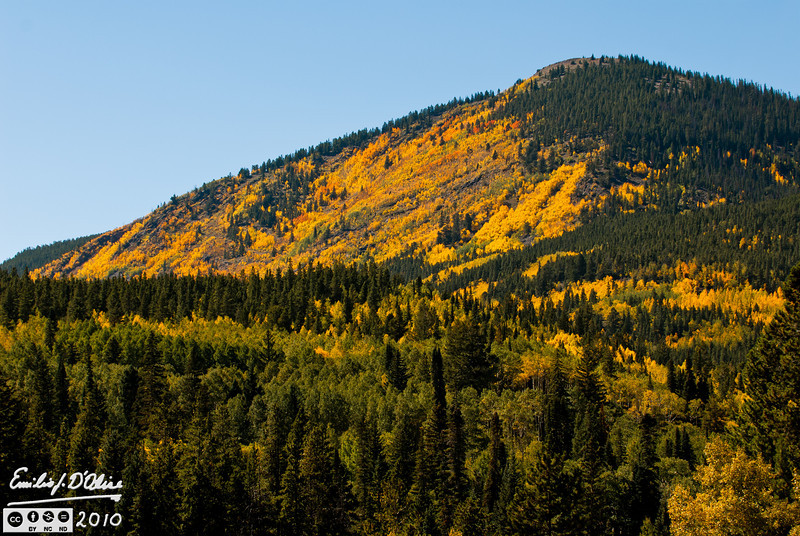 This is shot from US Highway 50, heading up to Monarch Pass.