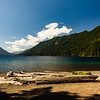 Lots of driftwood on the beach at Lake Crescent Lodge