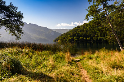 Path to Lake Crescent - great launch point for kayaks!