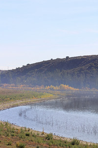 12/11/10 View from Levee, Lake Elsinore. Palomar Audubon outing w/Julie Szabo. Riverside County, CA