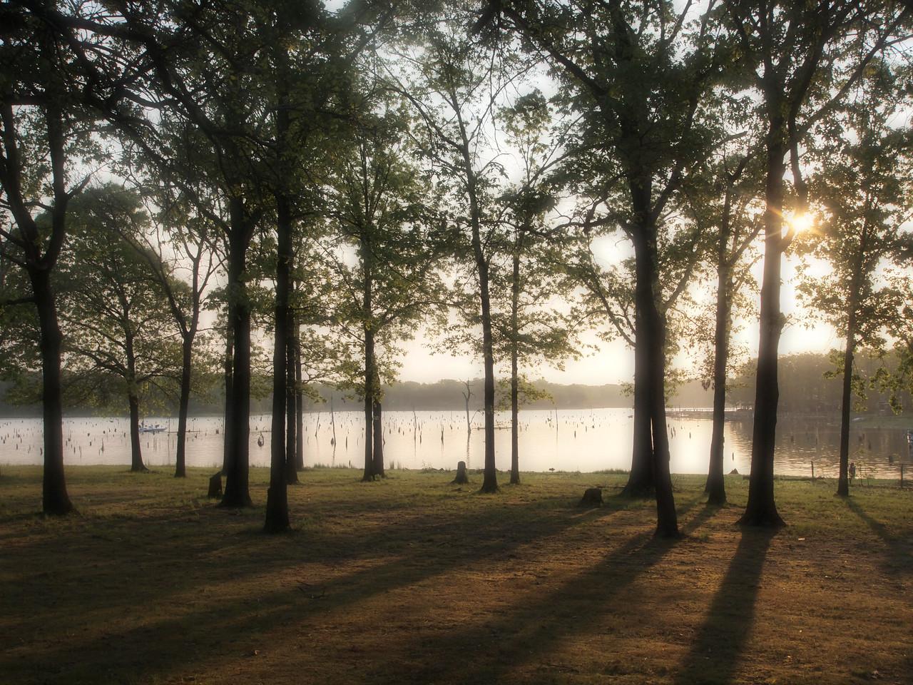 Ethereal Lake Fork Morning  Order Code: B28