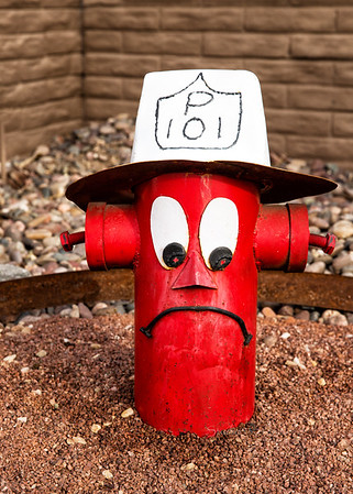 Red fireplug face 5397cf ton