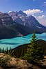 Stunning Peyto Lake, near the Icefields Parkway. With no pre-glimpses you walk up a mundane trail to a ridge and there it is. I knew beforehand that Peyto is Easter egg blue, but my jaw still dropped when I saw it.