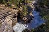 River canyon below Sunwapta Falls.