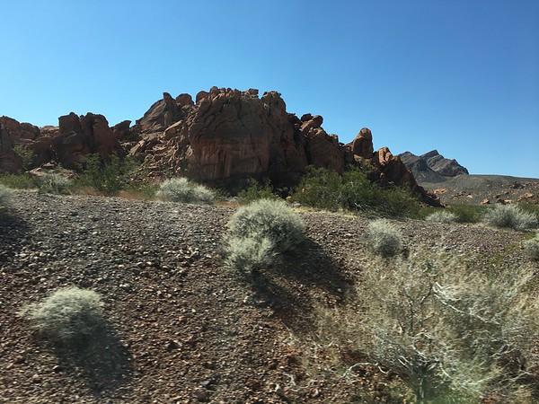 Sagebrush and rocks