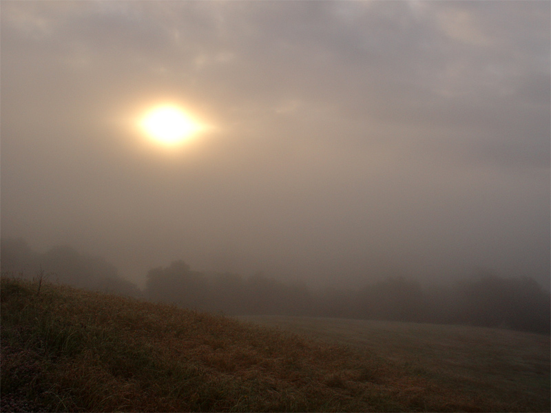 Sunrise through the fog.