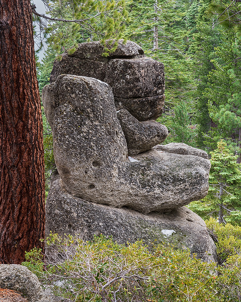 Man sitting overlooking the trail, Lake Tahoe