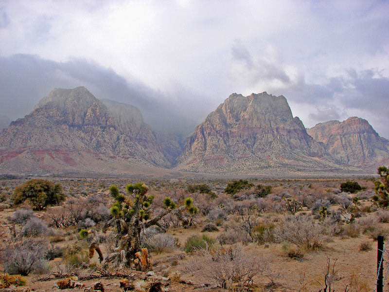 Red Rock Canyon - Spring Mountains, near Las Vegas