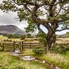 Landscape - Lake District, England