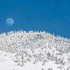 Frosty Moonrise