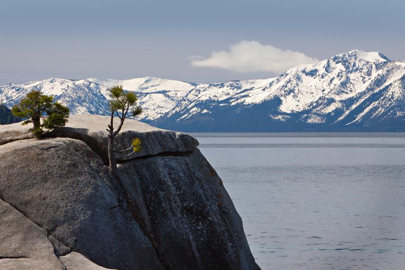 View from Bonsai Rock