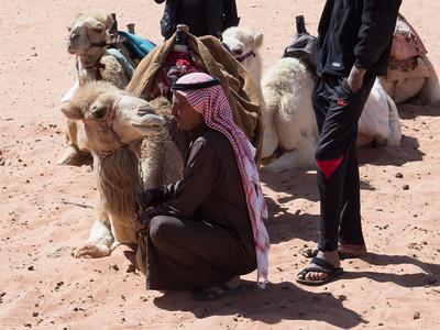 15-Jordan 2017-Wadi Rum-080