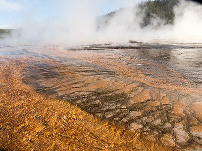 Yellowstone-080