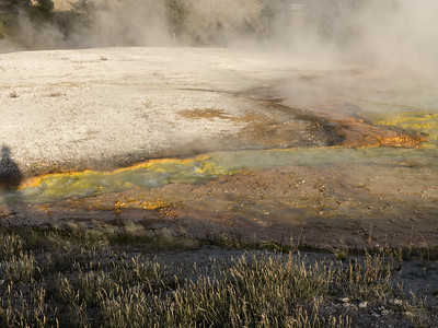 Yellowstone-065