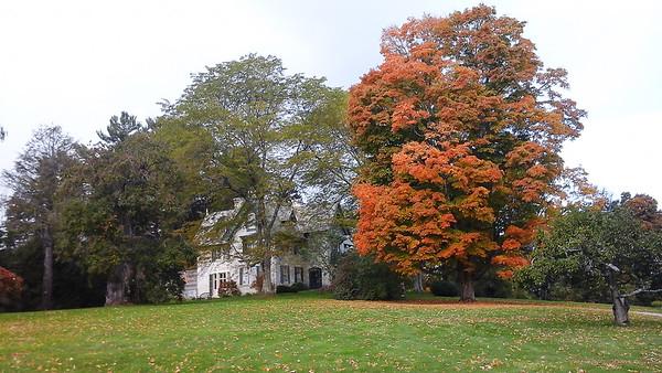 2015 New England