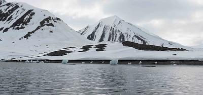 Glaciers. Photo Lisa M. Dellwo