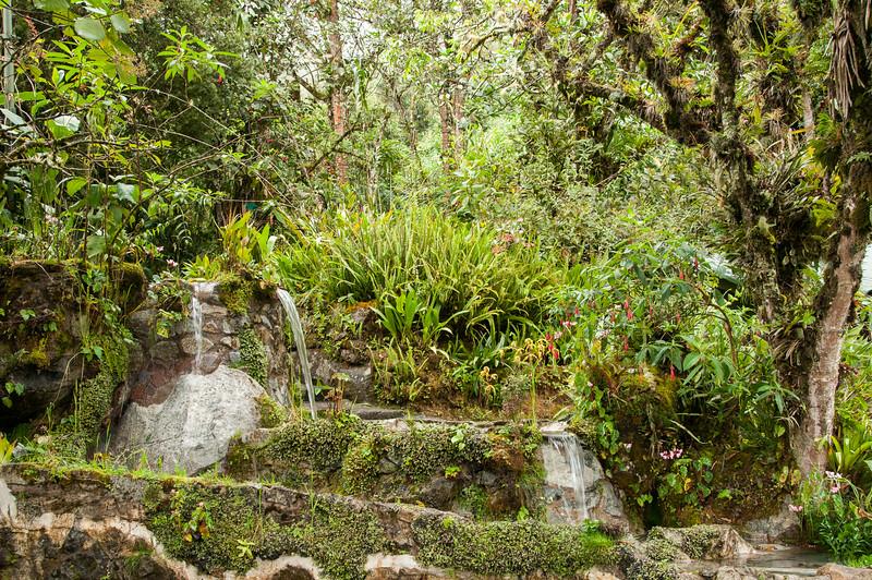 The garden behind Machu Picchu Sanctuary Lodge