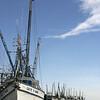 Shrimp Boats, Darian, Georgia