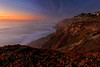 Pacifica Bluffs  ©2021  Janelle Orth