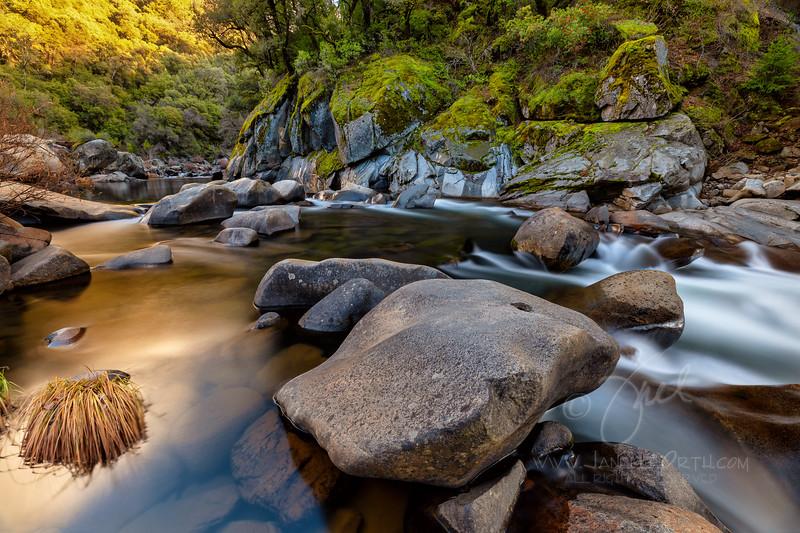 Mokelumne River  ©2020  Janelle Orth